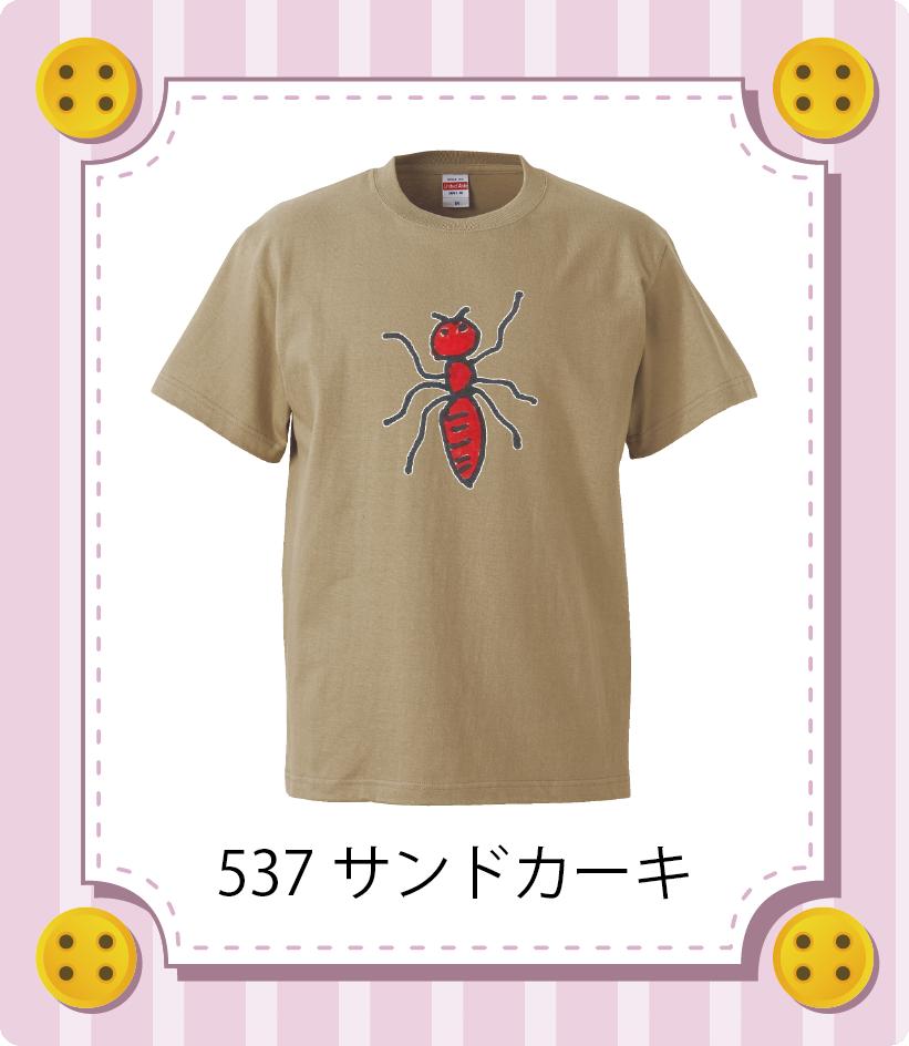七彩の風所属 K.Tさん「ant」